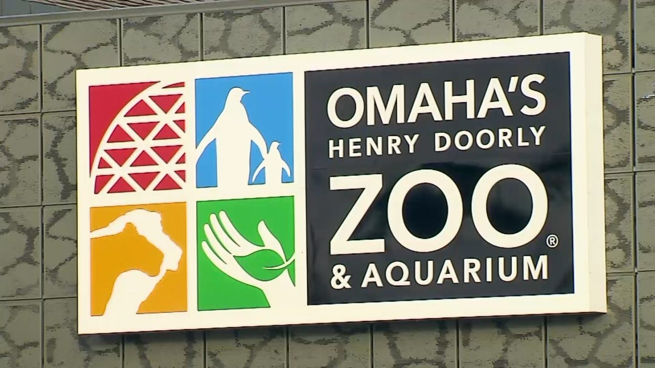 No one hurt after rhino breaks free at Omaha Zoo