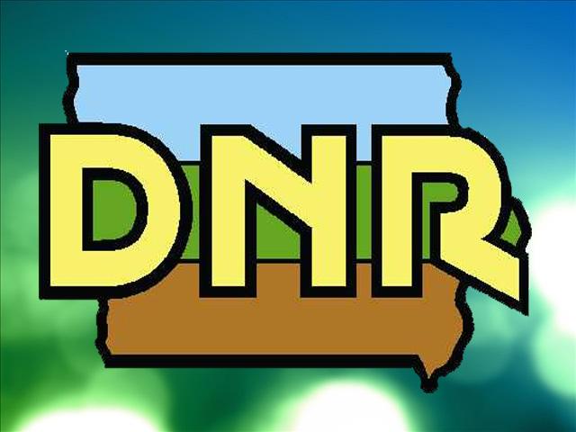 DNR_1512605131745.jpg
