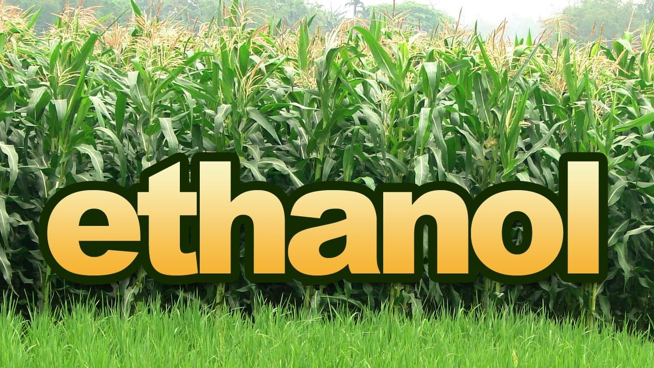 ethanol, corn_1536091741781.jpg.jpg