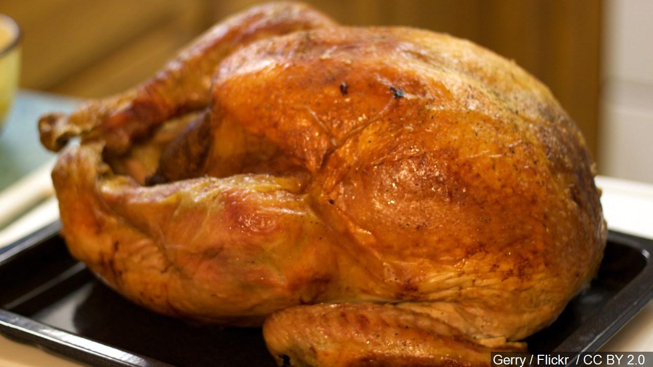 turkey, cook_1542838300789.jpg.jpg