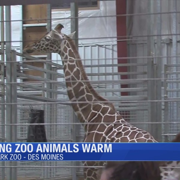 How_the_Blank_Park_Zoo_takes_care_of_ani_1_20190108165015-54710709