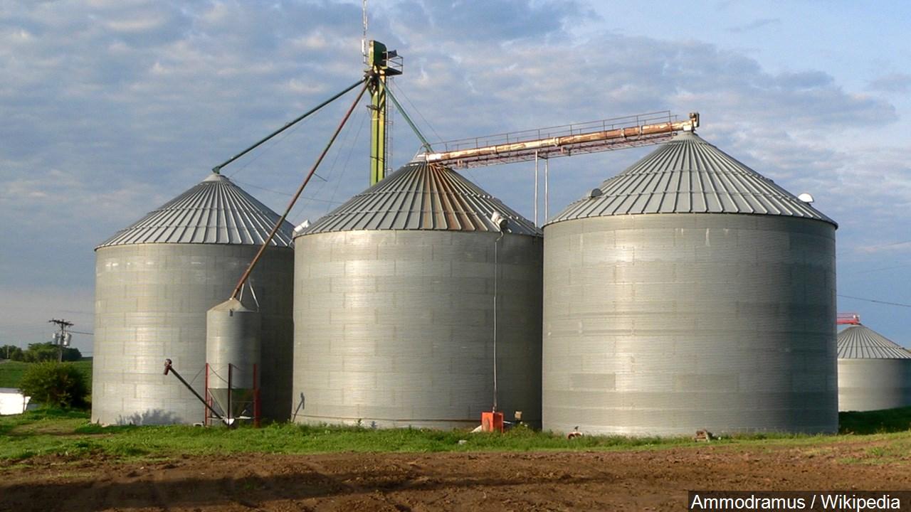 Grain Bin_1550504712253.jpg.jpg