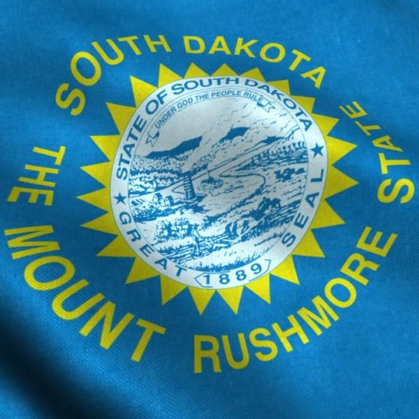 South Dakota flag_1550791845980.jpg.jpg