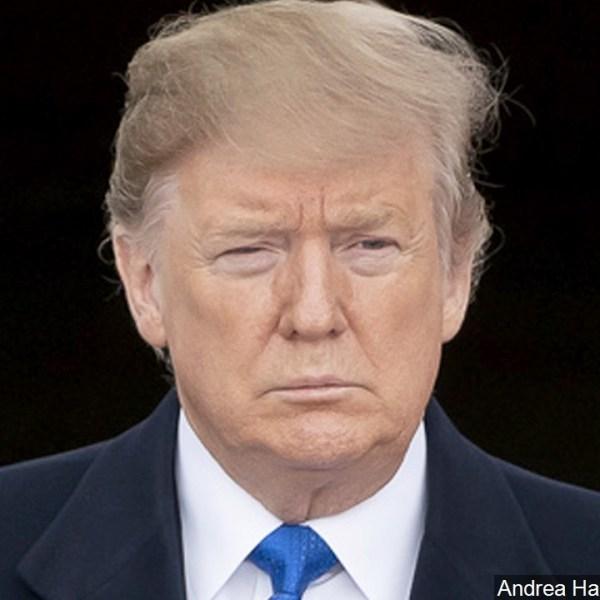 Trump asdf 3