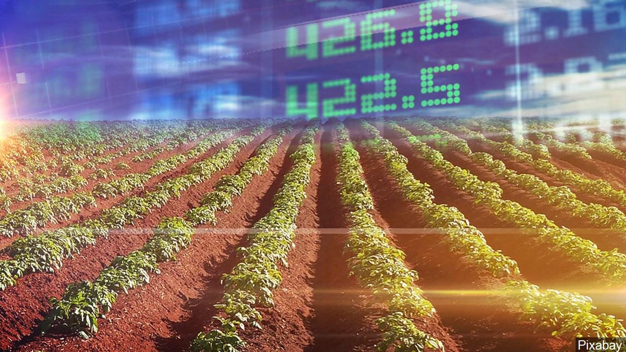 farm economy, agriculture,_1558043133063.jpg.jpg
