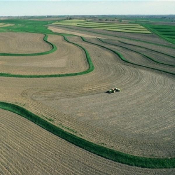 planting, farm, agriculture,_1556732032074.jpg.jpg