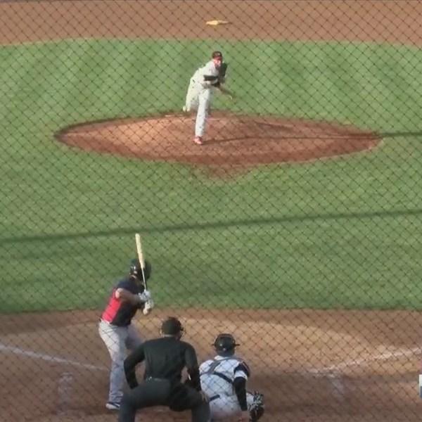 Baseball: Saltdogs v. X's